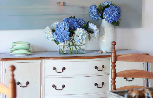 Chalk Paint or Milk Paint? The differences